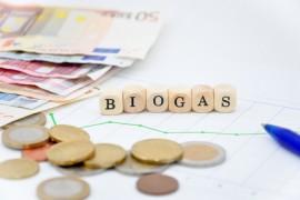 Biogas Schriftzug