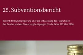 25-subventionsbericht-beitrag-bild